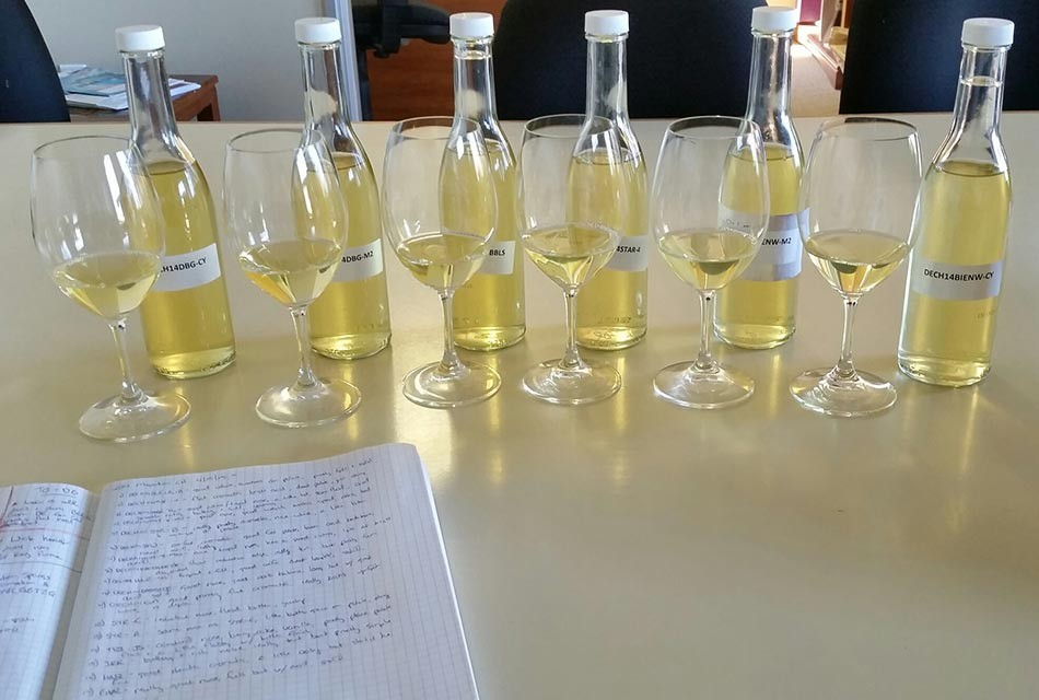 Migration Chardonnay blending